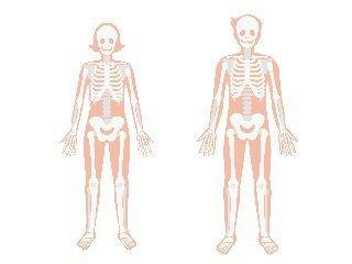 骨粗しょう症予防.jpg